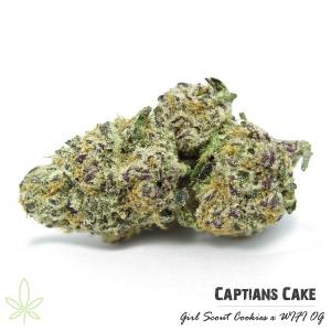 captians-cake-captians-connection-clones-for-sale-maine-207