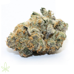 trangle-kush-clones-for-sale