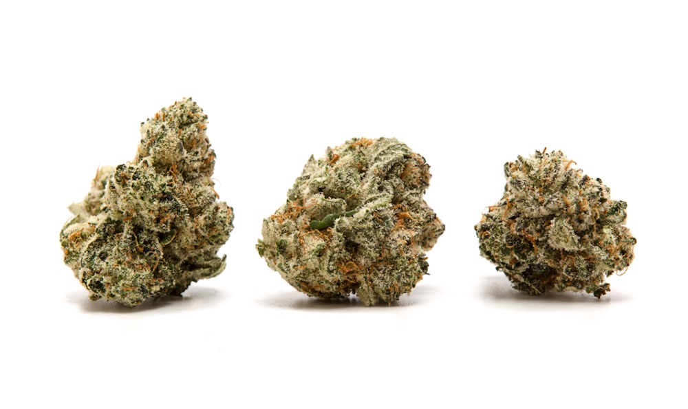 gorilla glue #4 clones for sale