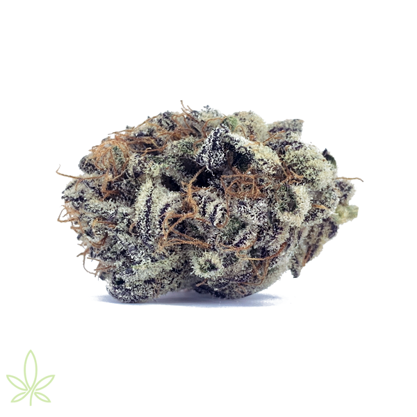 Mendo-Breath-cannabis-clones-for-sale-flower-picture
