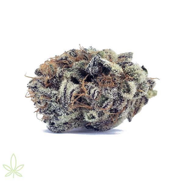 Mendo-Breath-cannabis-clones-for-sale-flower-picture