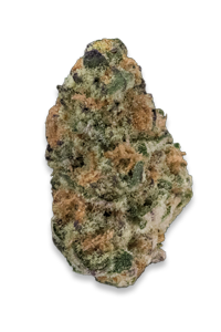slurricane-clones-for-sale-online-maine-mass