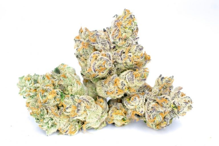 wedding-pie-cannabis-clones-for-sale-maine