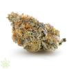 mendo-breath-f3-cannabis-clones-for-sale1