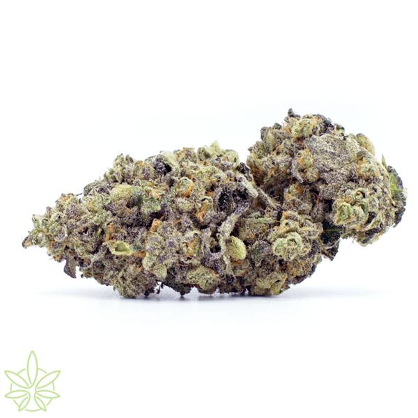 High-Octane-cannabis-clones-for-sale-maine-mass-california-1