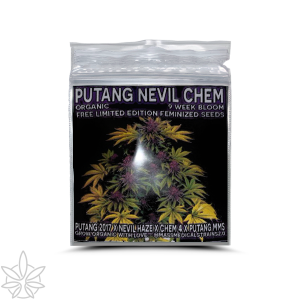 Putang Nevel Chem -Freebie!