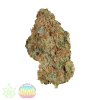 praying-mantis-mass-medical-strains-select-clones-for-sale-maine