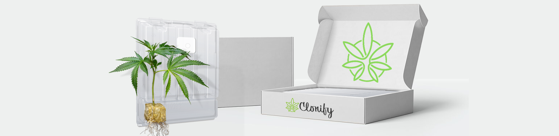 Clonify Subscription Box - Clone of the month program