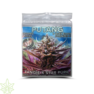 PuTang – Mass Medical Seeds